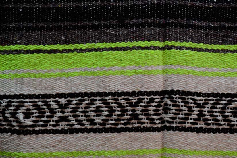 Mexican blanket, Falsa. Green