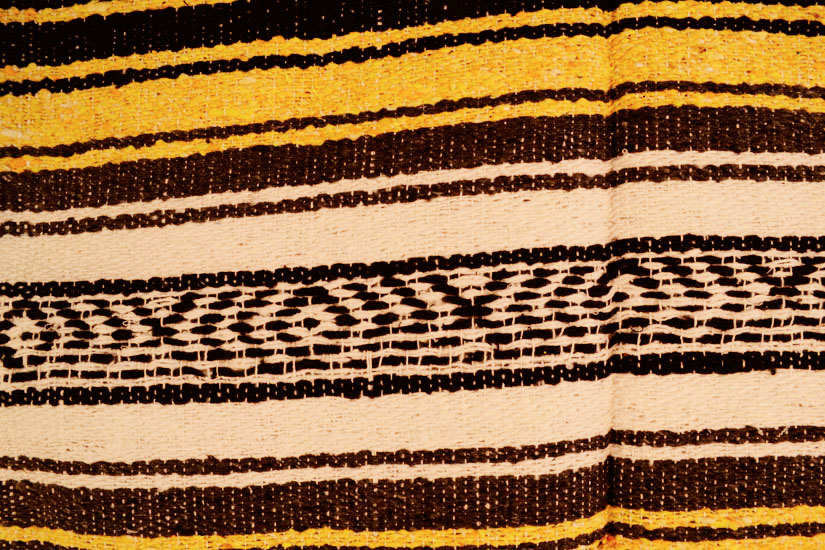 Mexican blanket,Falsa. Geel